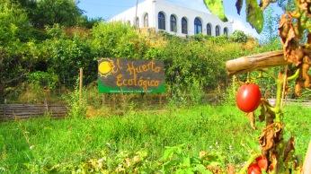 El huerto de la Granja Escuela de Lucainena, Los Baños