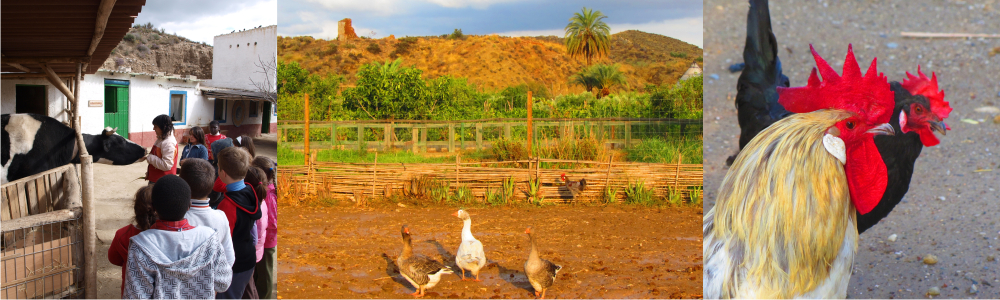 fotos de la Granja Escuela de Lucainena, Los Baños